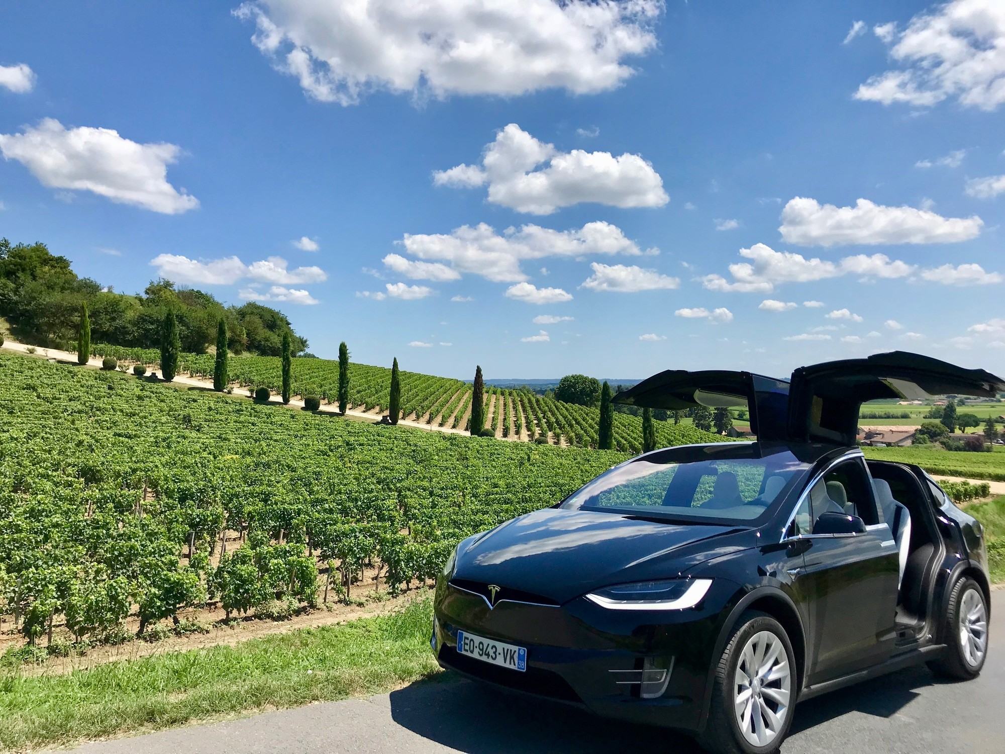 Tesla-eco-wine-tour-vignobles